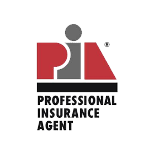 The Professional Insurance